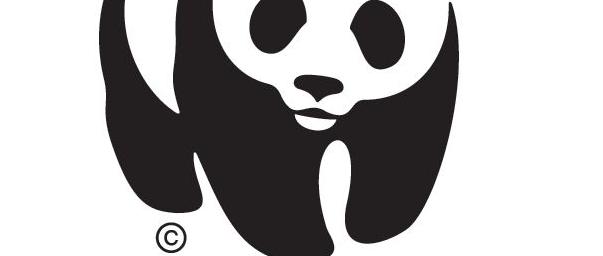 WWF Polska wybiera szkolenia biznesowe renomowanej firmy Delta Training